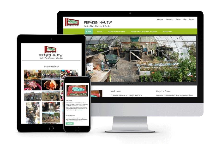 The Fundamental Web Site Design & Development Tools